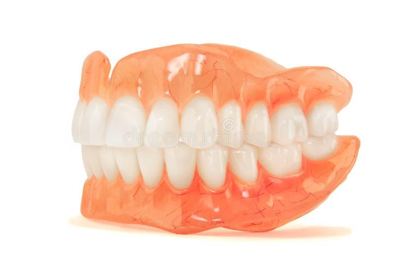 充分的假牙假牙特写镜头 与的矫形牙科我们 免版税图库摄影