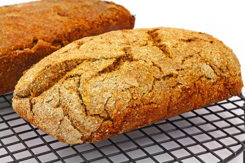 充分的大面包被舍入的视图 免版税库存照片