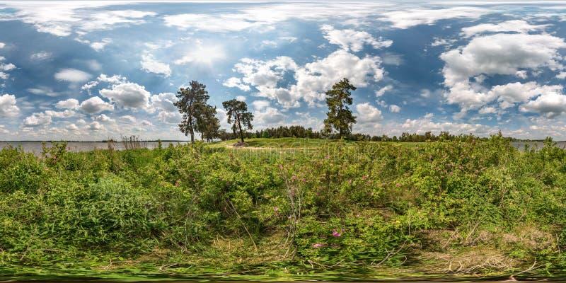 充分的无缝的球状hdri全景360度在巨大的湖或河草海岸的角度图犬蔷薇灌木的和有风 免版税库存照片