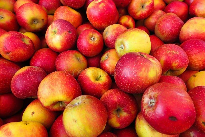 充分的框架关闭wellant堆红色黄色的苹果 免版税库存照片