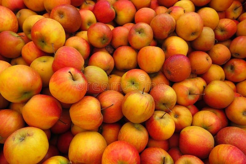 充分的框架关闭wellant堆红色黄色的苹果 免版税图库摄影