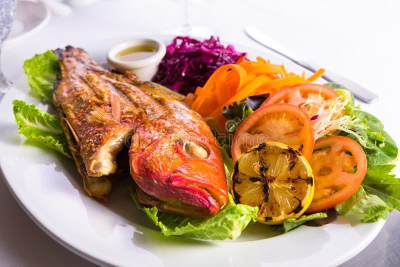 充分的煮熟的罗非鱼服务与菜和鱼子酱 免版税库存图片