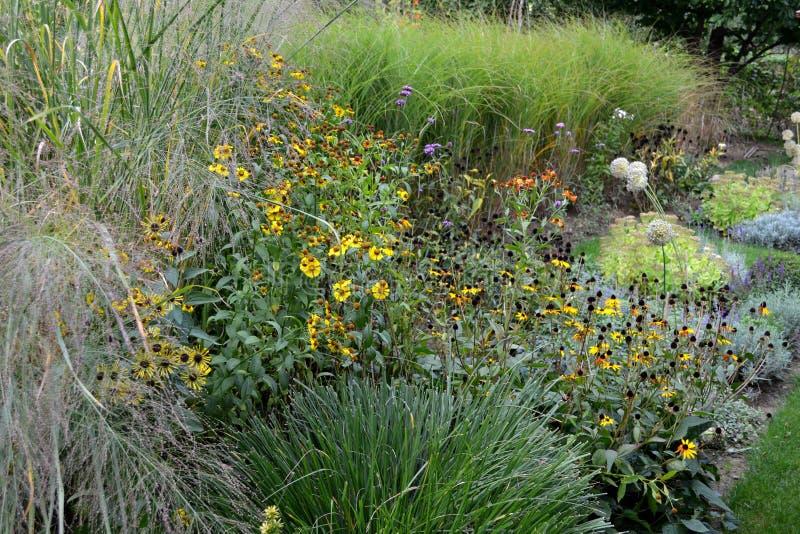 充分秋天庭院装饰草和多年生植物 库存照片