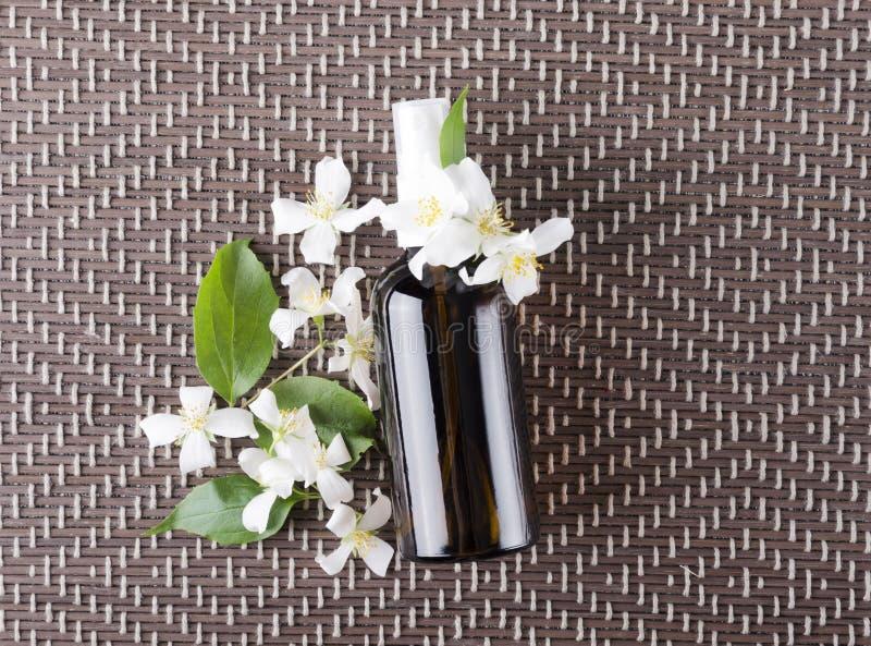 充分茉莉花花和瓶秀丽治疗的油 浪花瓶顶视图有茉莉花油的 免版税库存图片