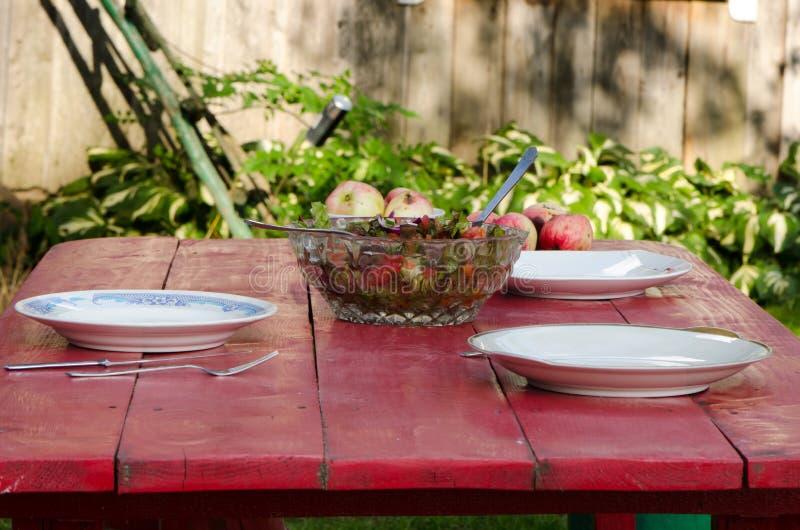 室外沙拉玻璃盘苹果木房子的桌 免版税库存图片