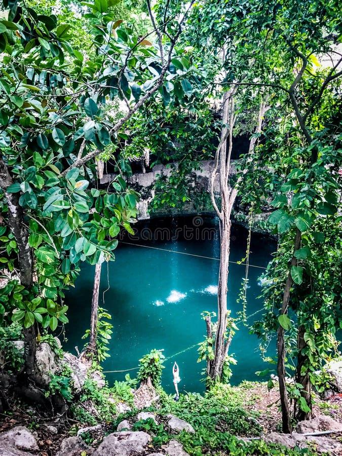 充满水的洞在密林 库存图片