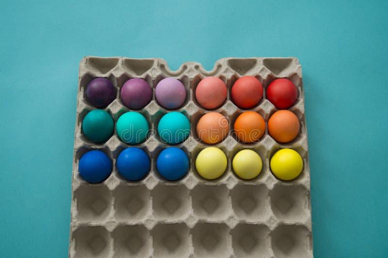 充满活力的手在被观看的纸板蛋盒的被洗染的五颜六色的复活节彩蛋 免版税库存图片