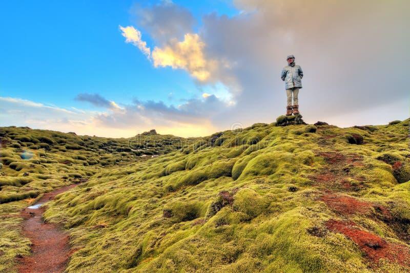 充满活力的旅游业冰岛 免版税图库摄影