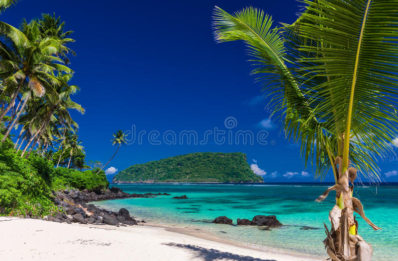 充满活力的热带Lalomanu海滩全景在萨摩亚海岛上的与 免版税图库摄影