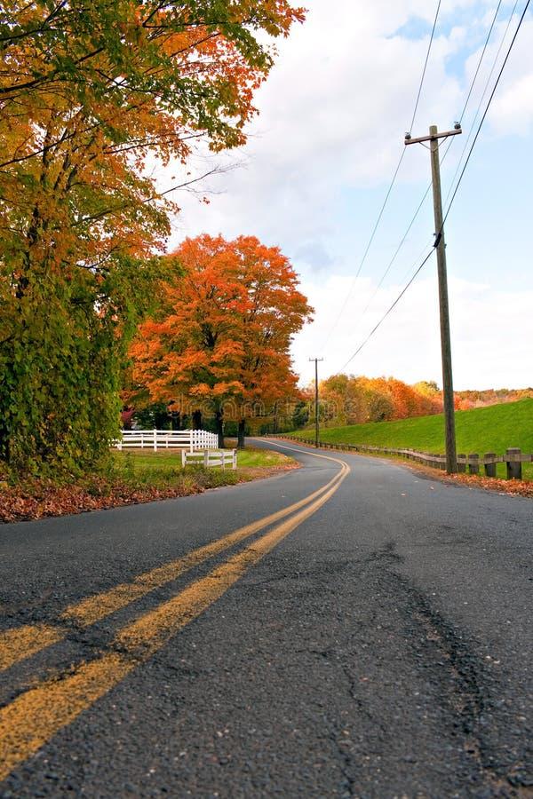 充满活力的秋叶路 免版税库存照片