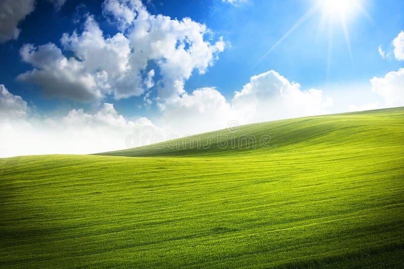 充满活力的绿色山谷 库存图片
