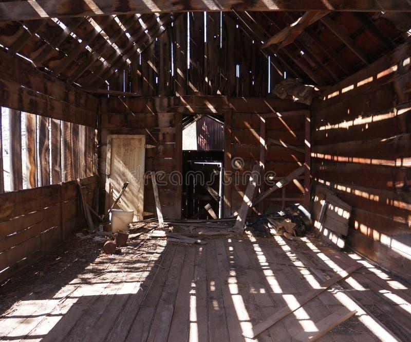 光和树荫在一个老棚子
