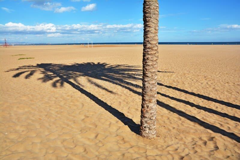 光和阴影在海滩 免版税库存图片