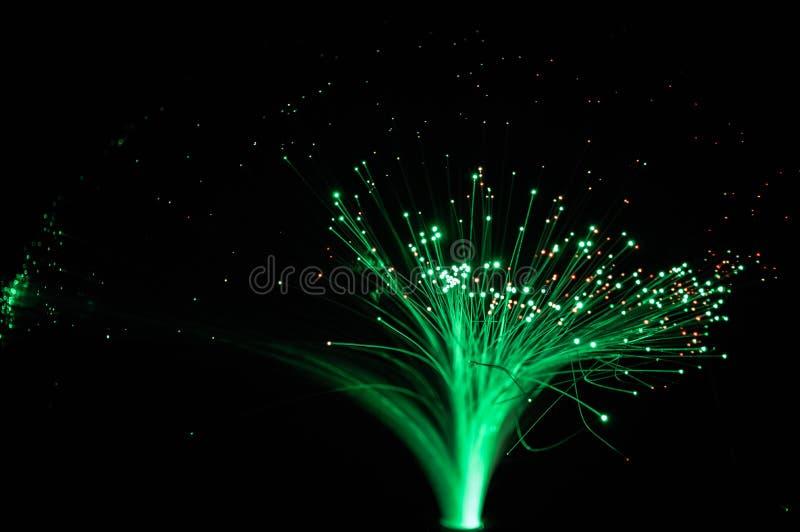 光学纤维的网络 免版税库存图片