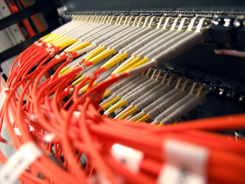 光学纤维的网络 库存图片