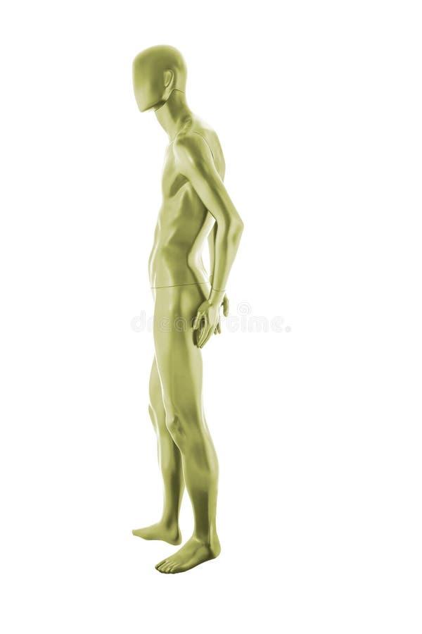 光泽颜色被隔绝的时装模特男性 库存例证