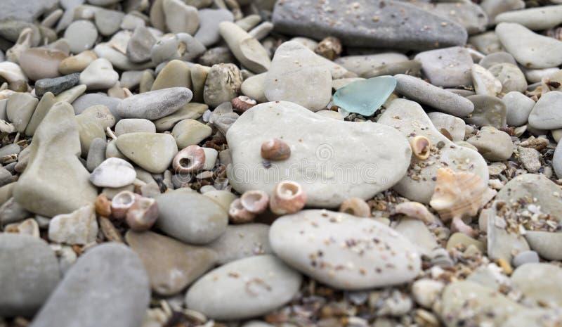 光滑的小小卵石和贝壳特写镜头,假期背景 免版税图库摄影