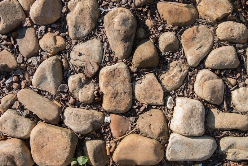 光滑的岩石在焦点 库存图片