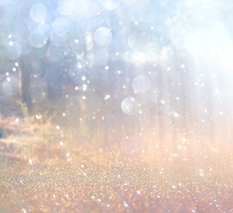 光爆炸抽象照片在树和闪烁bokeh中的点燃 图象被弄脏并且被过滤 免版税库存照片