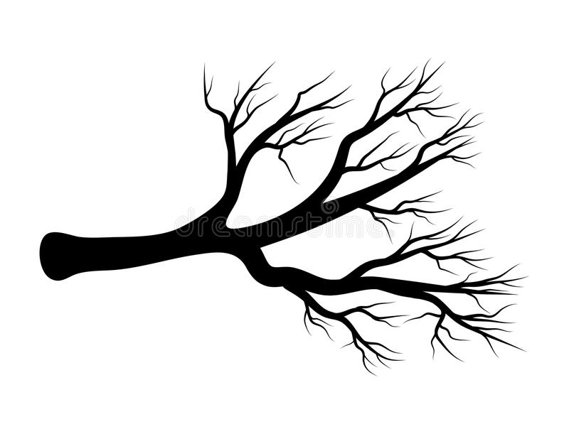 光秃的分支传染媒介标志象设计 美好的例证是 向量例证