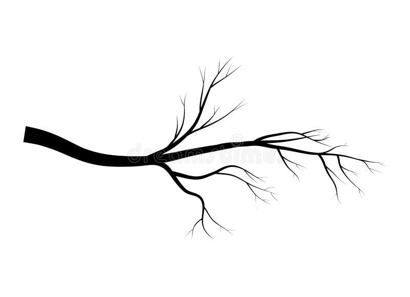 光秃的分支树剪影传染媒介标志象设计 在白色背景隔绝的美好的例证 皇族释放例证