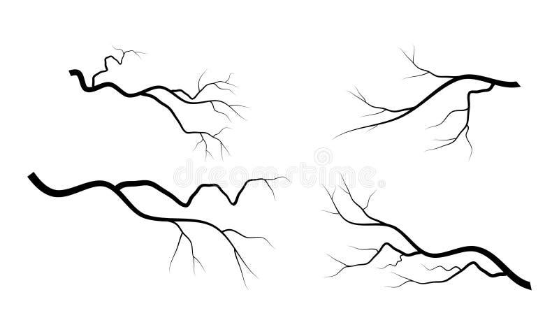 光秃的分支集合传染媒介标志象设计 向量例证