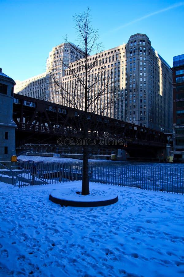 光秃的树和脚印在积雪的riverwalk横跨冻和冰大块填装了芝加哥河 免版税图库摄影