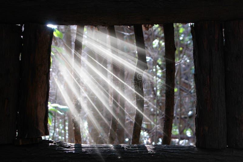 光线 库存照片