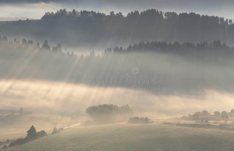 光芒通过薄雾发光 图库摄影