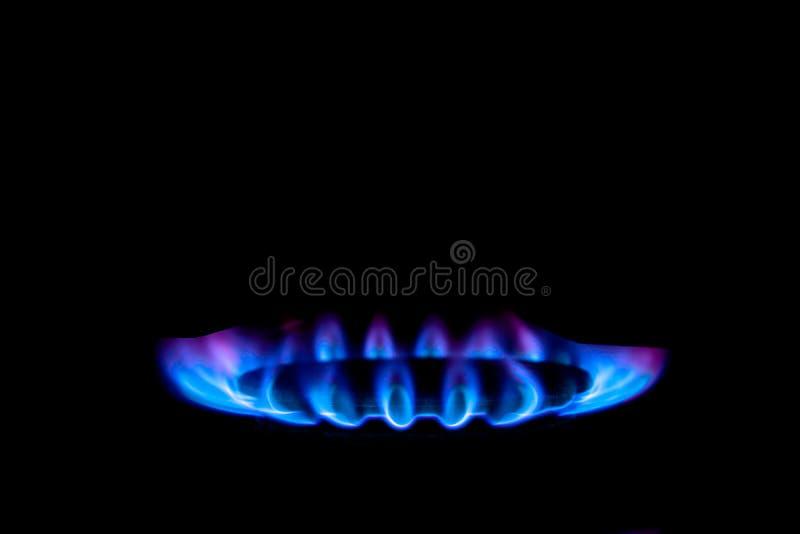 光滑的从煤气炉的火焰蓝色紫罗兰,在黑背景 免版税库存照片