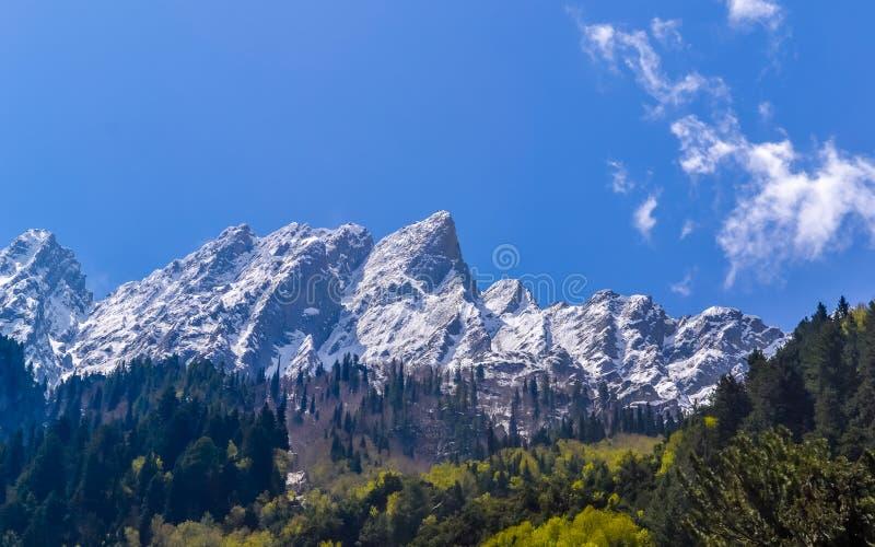 克什米尔喜马拉雅山,印度喜马拉雅地区查谟-克什米尔邦,印度 了不起的喜马拉雅轴从南迦帕尔巴特峰跑东南部到尼姑 库存图片