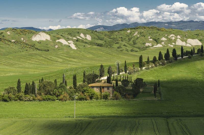 克利特Senesi的全景在托斯卡纳,意大利 免版税库存图片
