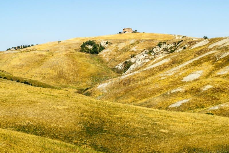 克利特senesi,特色景观在Val d'Orcia 免版税库存图片