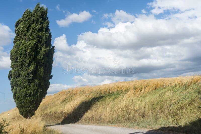 克利特Senesi (托斯卡纳,意大利) 库存照片