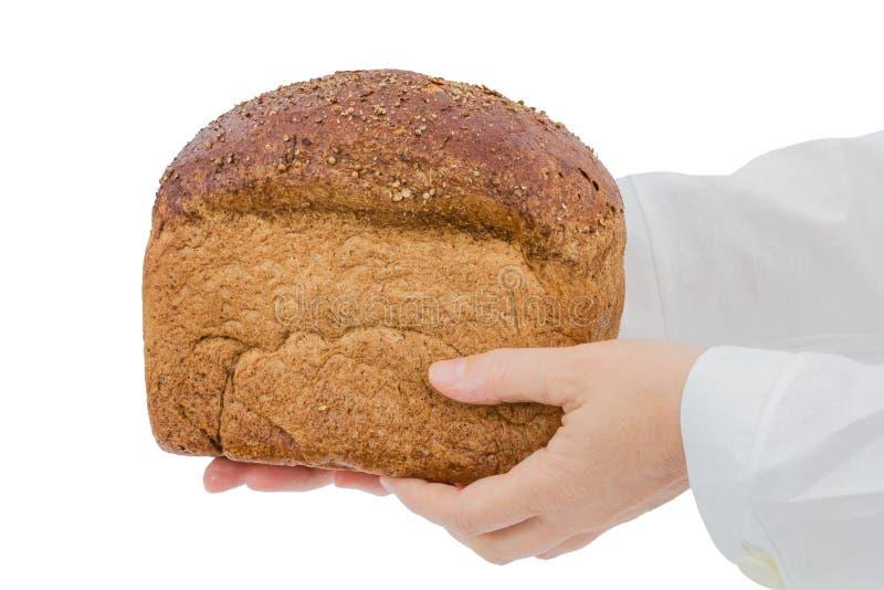 贝克在手上的拿着新鲜面包,隔绝在白色背景 库存图片
