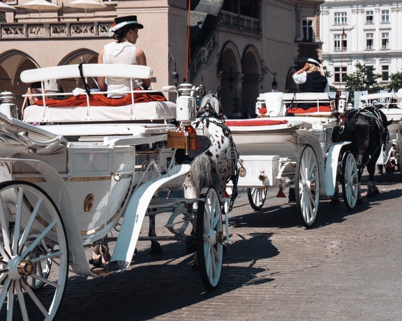 克拉科夫,波兰- 2019年6月03日:马用车运送等待的游人 免版税库存图片