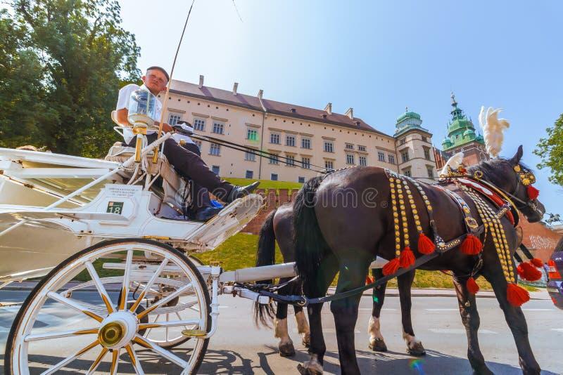 克拉科夫(克拉科夫) -波兰马对Wawel城堡的支架游览 库存照片