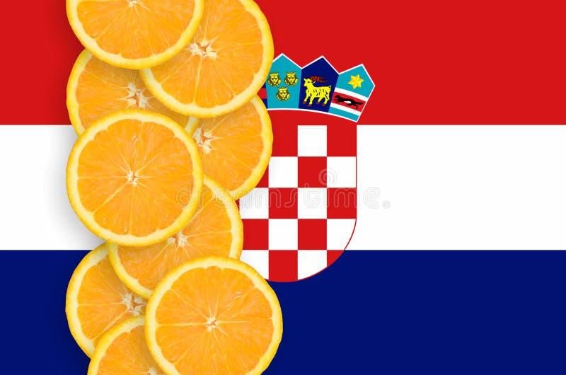 克罗地亚旗子和柑桔切片垂直的行 皇族释放例证