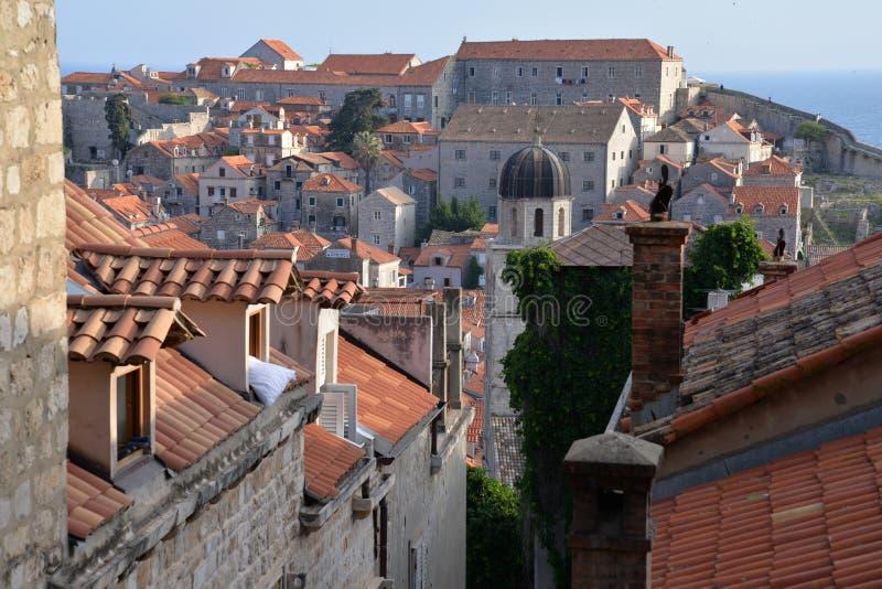 克罗地亚杜布罗夫尼克市 老城市屋顶的看法 库存图片