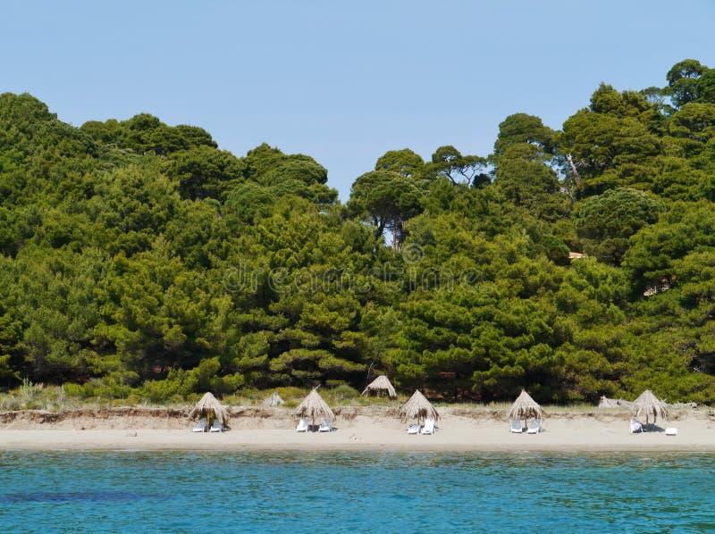 克罗地亚海岛姆列特岛的Saplunara海湾 免版税库存图片