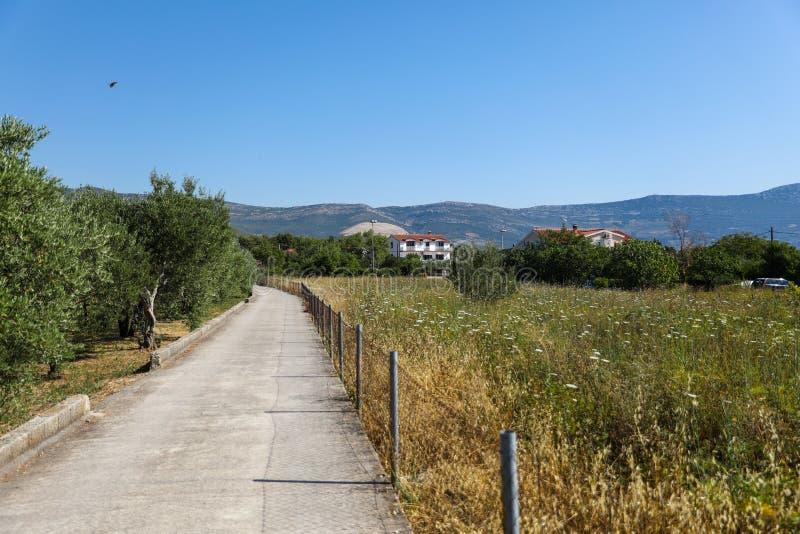 克罗地亚的小山路在夏天 免版税库存照片