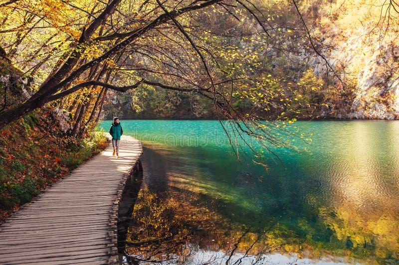 克罗地亚自然公园Plitvice湖在秋天-男孩在brid走 免版税库存照片