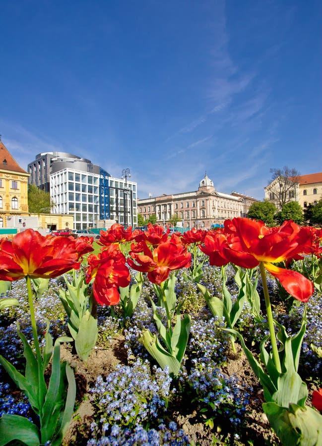 克罗地亚萨格勒布的五颜六色的首都 免版税库存照片