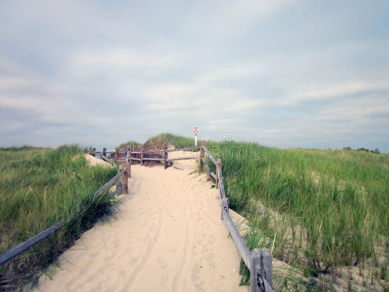 克罗斯比着陆海滩,布鲁斯特,马萨诸塞(鳕鱼角) 免版税库存图片
