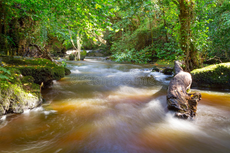 克莱尔幽谷美丽的小河  免版税图库摄影