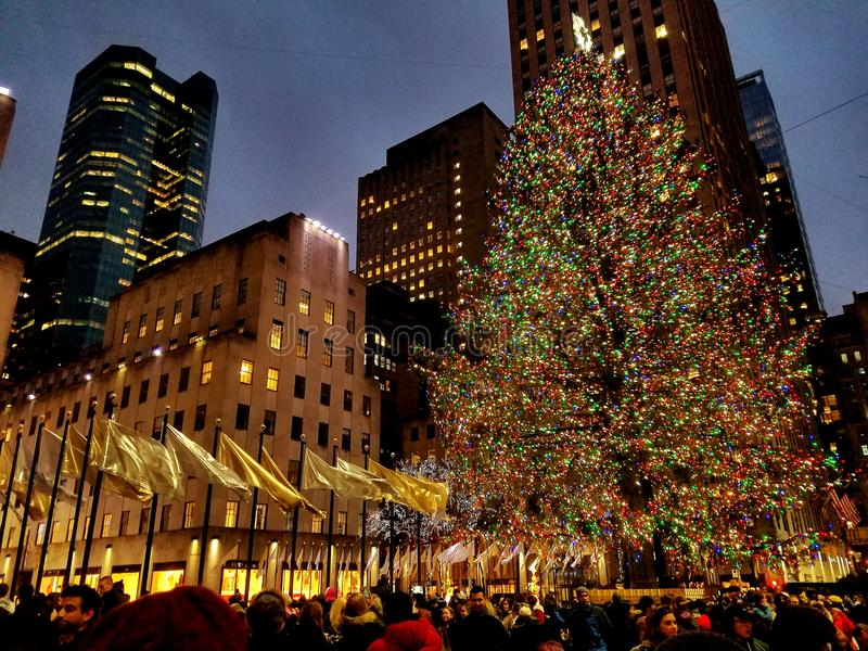 洛克菲勒中心圣诞树 库存照片