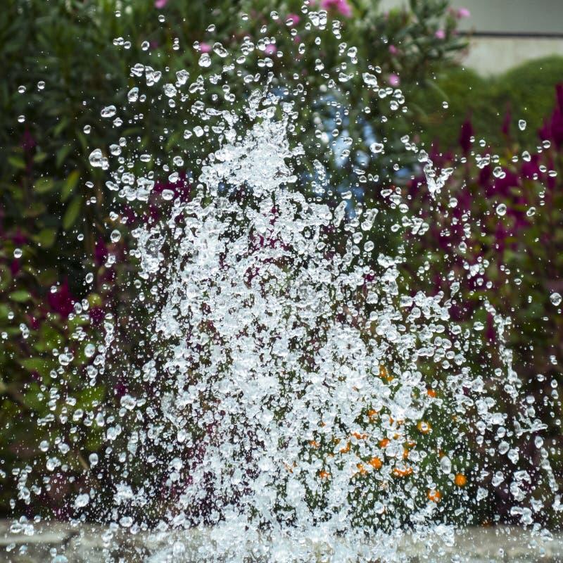 克里米亚半岛自然 喷泉在公园 免版税库存照片