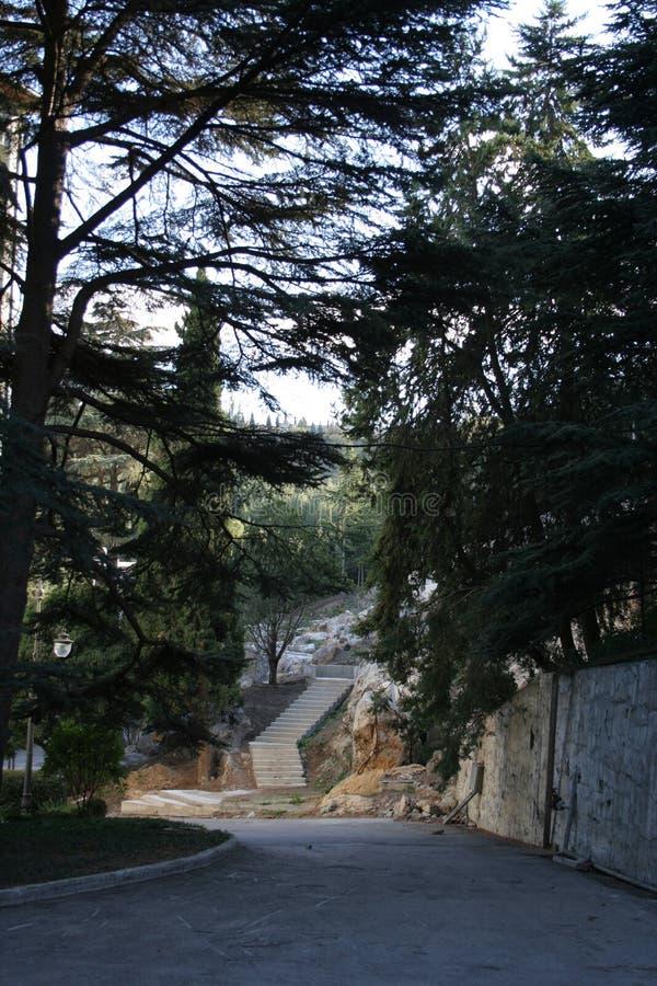 克里米亚半岛魅力 免版税库存照片