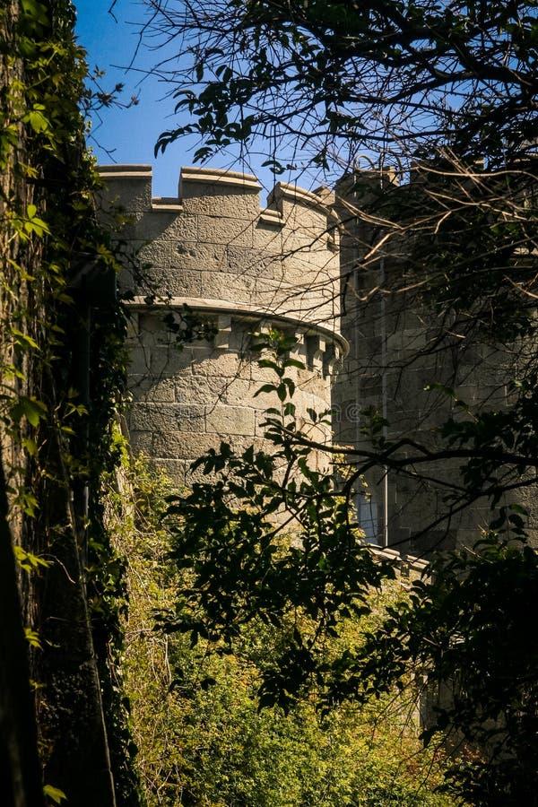 克里米亚沃龙佐夫宫殿圆的塔通过树 图库摄影