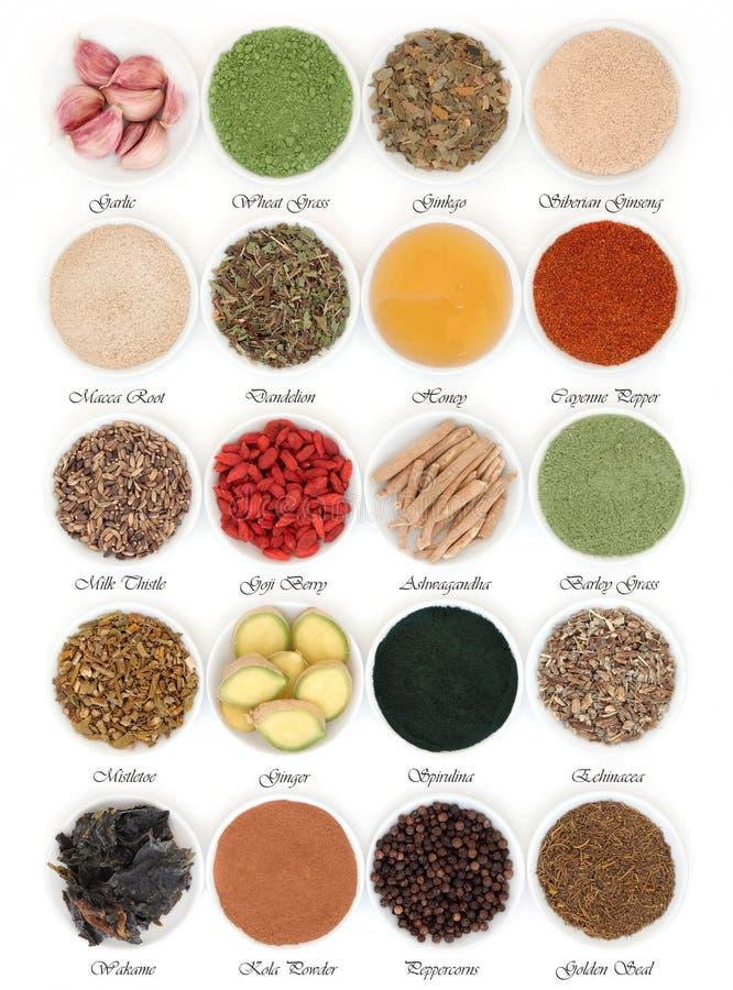 免疫促进的食物 免版税库存照片